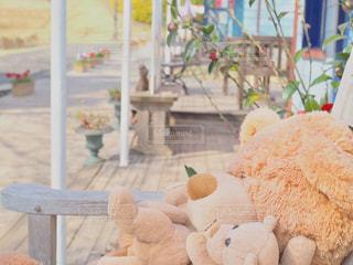 お店の前にいたクマさんの写真・画像素材[1092034]