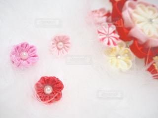 赤と白のケーキの写真・画像素材[1564494]