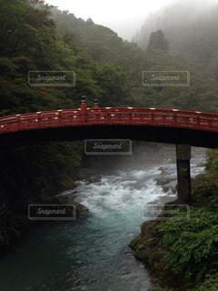 川と橋の写真・画像素材[1090911]