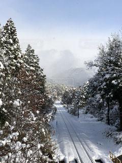 雪に覆われた斜面をスキーに乗る人の写真・画像素材[1776934]