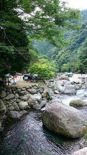 岩の木と岩の多い川の写真・画像素材[1059661]