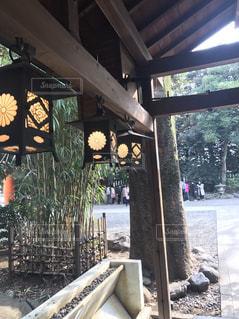 川越の氷川神社の灯篭の写真・画像素材[1059656]