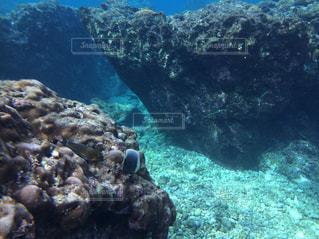 大きな岩の水中ビューの写真・画像素材[1066747]