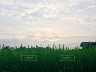 田舎の風景の写真・画像素材[1063323]