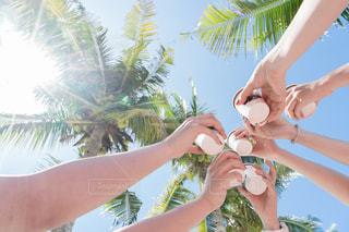 ビーチで乾杯!の写真・画像素材[1155871]