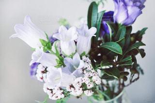 紫色の花でいっぱいの花瓶の写真・画像素材[2354359]