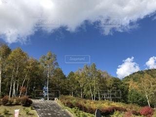 紅葉の高原の写真・画像素材[1581296]
