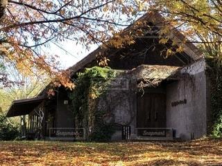 木の小さな家の写真・画像素材[1585288]