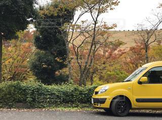 黄色の車と紅葉の写真・画像素材[1061595]