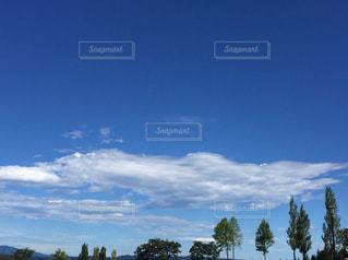青空の景色の写真・画像素材[1061857]