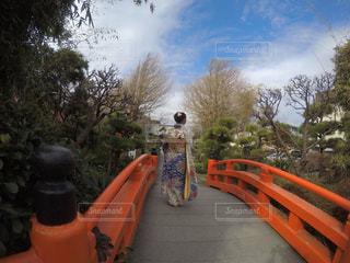 成人式の日に太鼓橋の上で撮影の写真・画像素材[1063262]