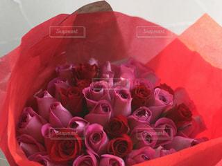 バラの花束の写真・画像素材[1063308]