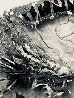 竜に魅せられての写真・画像素材[1064827]