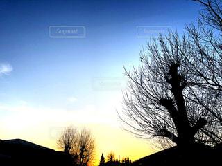 FRESH MORNING.の写真・画像素材[1060991]