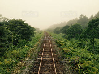 線路の写真・画像素材[1061008]
