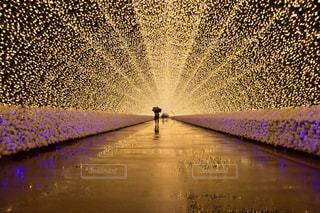 なばなの里 光のトンネルの写真・画像素材[1135410]