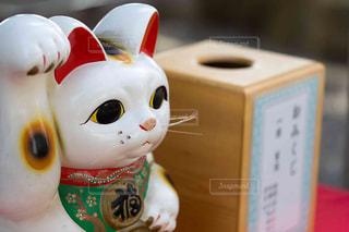 招き猫の写真・画像素材[1065962]