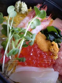 海鮮丼の写真・画像素材[1240955]
