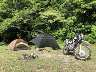 キャンプの写真・画像素材[3351744]