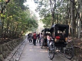 春の京都。 - No.1089258