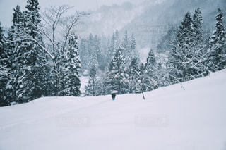 雪の中を行けの写真・画像素材[1062389]