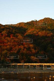紅葉と橋(渡月橋)の写真・画像素材[1063056]