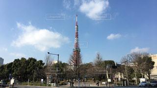 東京タワーの写真・画像素材[1064018]