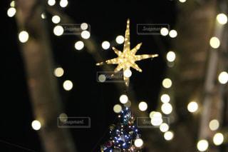 クリスマスツリーの星の写真・画像素材[1067697]