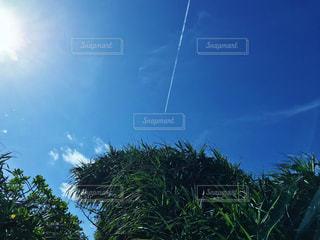 飛行機雲の写真・画像素材[1063947]