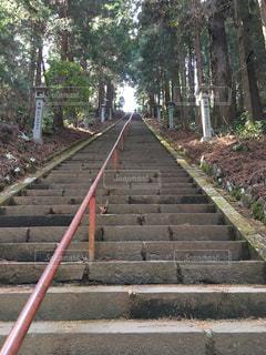 長い階段の写真・画像素材[1064264]