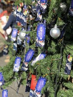クリスマスの写真・画像素材[1064187]