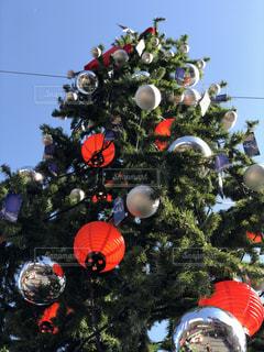 クリスマス ツリーの写真・画像素材[1064192]