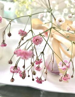テーブルの上のピンクの花の写真・画像素材[1064987]