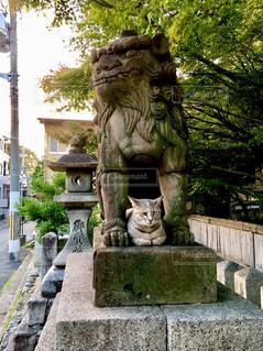 公園の銅像と猫の写真・画像素材[1067464]
