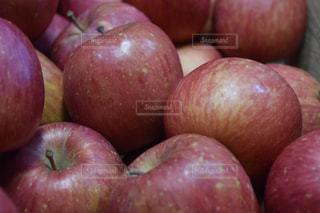 赤いリンゴの写真・画像素材[1065967]