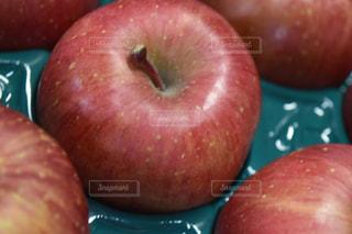りんごの写真・画像素材[1065986]