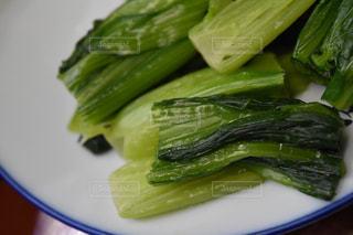 小松菜の写真・画像素材[1069178]