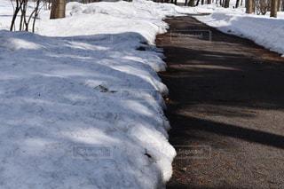 雪と道の写真・画像素材[1069836]