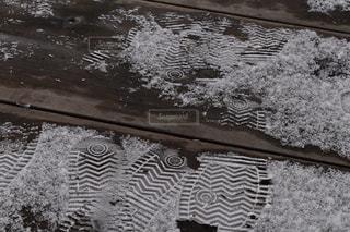 雪足跡の写真・画像素材[1070351]