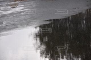 水辺の写真・画像素材[1070386]