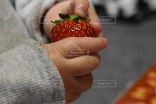 果物を持っている手の写真・画像素材[1076777]