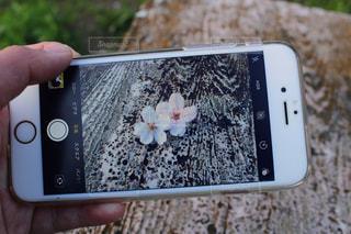 携帯電話を持つ手の写真・画像素材[1089937]