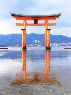 厳島の写真・画像素材[1069659]