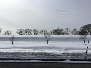 雪に覆われたフィールド ダウン スキーに乗る男の写真・画像素材[1066864]