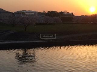 夕焼けに染まる桜の写真・画像素材[1106057]