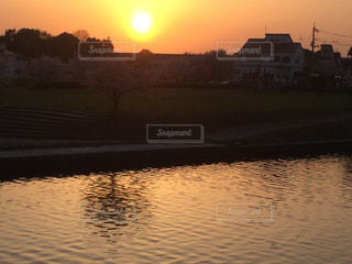 夕焼けに染まる桜の写真・画像素材[1106058]
