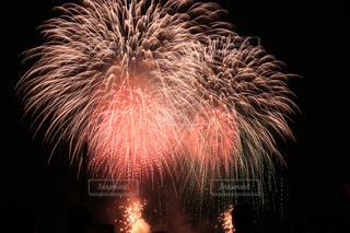 空に花火の写真・画像素材[1072631]