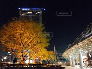 夜の東京ドームの写真・画像素材[1085652]