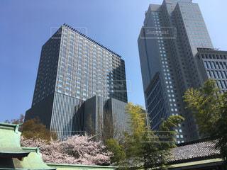 日枝神社から見上げる赤坂のビルの写真・画像素材[1090979]