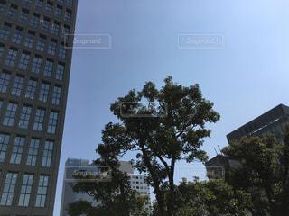 日枝神社から見た溜池山王の写真・画像素材[1090988]